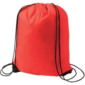 sports bag 1