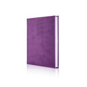 castelli 2019 tucson diary 1
