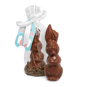 Giant Chocolate Bunny